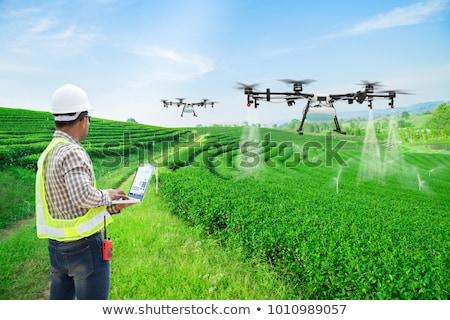 Mezőgazdaság ipar gazdálkodás technológia növény mező Stock fotó © AndreyPopov