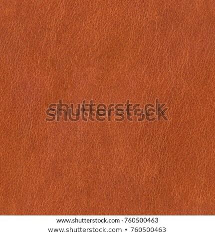 üres · piros · pénztárca · női · kezek · izolált - stock fotó © trgowanlock