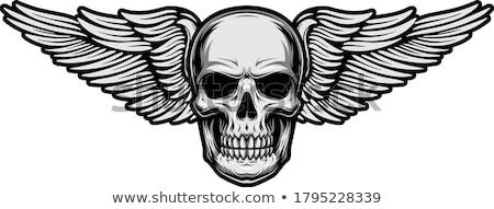 Cráneo ilustración blanco negro arte signo tinta Foto stock © lineartestpilot