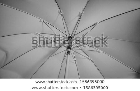 asiático · guarda-chuva · pormenor · feito · à · mão · decorado - foto stock © frameangel