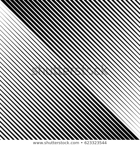 Geometric background with a waving grid and a distortion in the form of blowing. Vector illustration Stock photo © m_pavlov