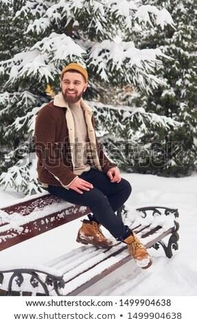 Retrato alegre homem suéter cachecol em pé Foto stock © deandrobot