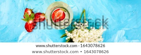 Kombucha tea with elderflower flower on blue background. . Stock photo © Illia