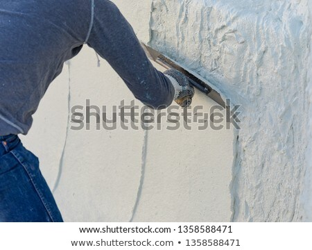 Worker Smoothing Wet Pool Plaster With Trowel Stock photo © feverpitch