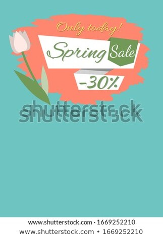 Spring Sale 30 Percent Price Off Webpage Online Stock photo © robuart