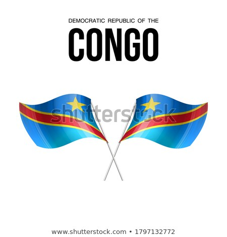 Congo flag, vector illustration on a white background Stock photo © butenkow