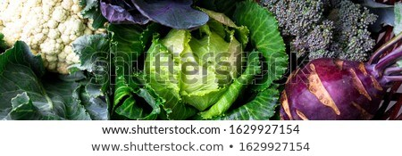Banner with Variety of cabbages in wooden basket Stock photo © Illia