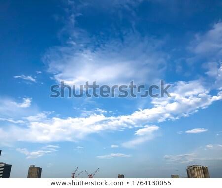 Tóquio linha do horizonte cor edifícios blue sky Foto stock © ShustrikS