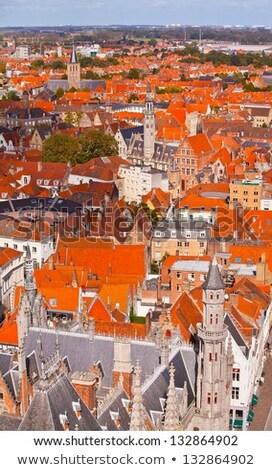 Panorama Belçika ev Bina kentsel Stok fotoğraf © dmitry_rukhlenko