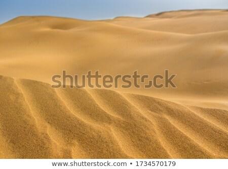 песок пустыне природы аннотация лет Сток-фото © oksanika