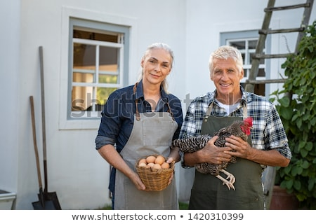 A middle age couple in their farm. Stock photo © photography33