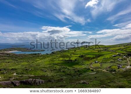 ストックフォト: 島 · 表示 · 風光明媚な · アイルランド · 海岸線 · ビーチ