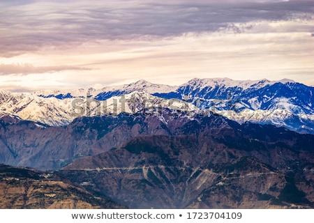 Himalaia paisagem cavalo vale himalaia Foto stock © sumners