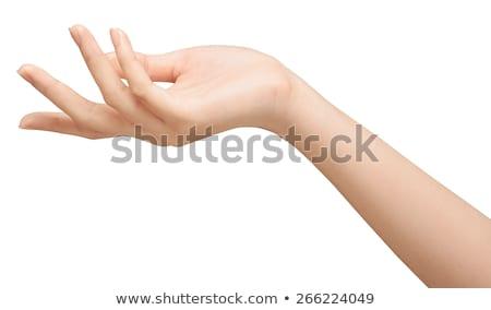 Kinyitott kezek fehér üzlet égbolt Föld Stock fotó © oly5