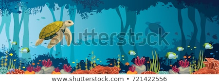 Marine life with turtle, vector illustration  Stock photo © carodi