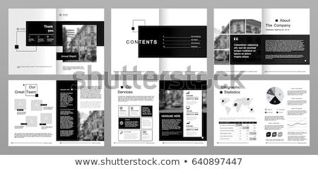 минимальный охватывать шаблон дизайна набор чистой Сток-фото © SArts