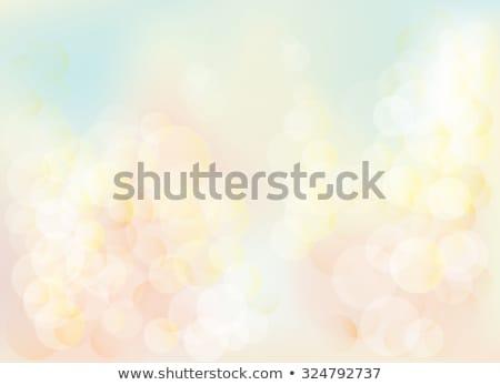 Pasztell háló elmosódott szín gradiens minta Stock fotó © Andrei_