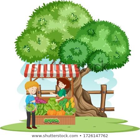 Cena cliente compra legumes fazenda ilustração Foto stock © bluering