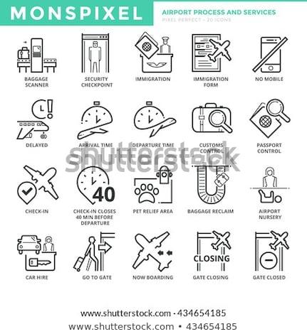 Paspoort controle icon vector schets illustratie Stockfoto © pikepicture