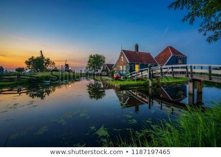 Windmills at Zaanse Schans in Holland in twilight on sunset. Zaa Stock photo © dmitry_rukhlenko