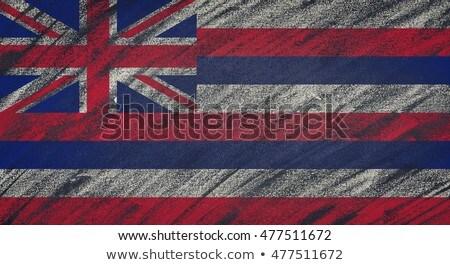 Vlag Indiana Blackboard geschilderd krijt amerikaanse Stockfoto © vepar5
