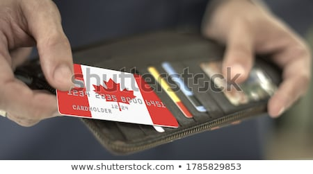 Canadian Businessman holding business card with Canada Flag Stock photo © stevanovicigor