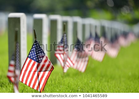 graves at Arlington national Cemetery in Washington Stock photo © meinzahn