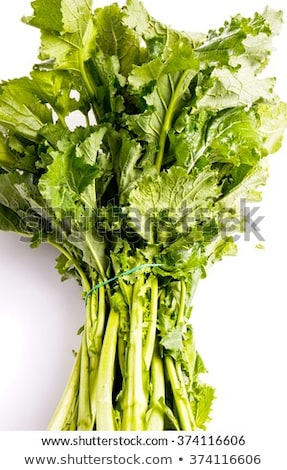 Cime De Rapa, Turnip Greens Stock photo © Klinker