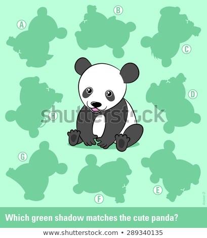 összeillő fiatal rajz panda medve helyes Stock fotó © adrian_n