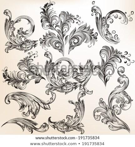 elemanları · dizayn · sayfa · dekorasyon · vektör - stok fotoğraf © blue-pen
