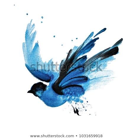 紙 鳥 青 色 実例 背景 ストックフォト © colematt