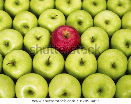 Apple green on red  Stock photo © jomphong