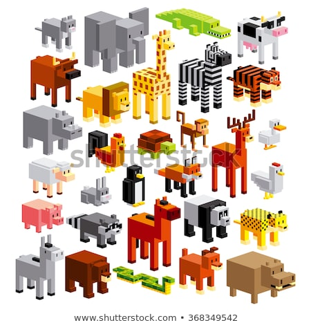differences game with wild animal characters group Stock photo © izakowski