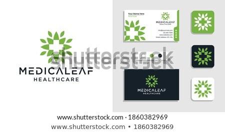 cannabis leaf medical cross designs Stock photo © Zuzuan