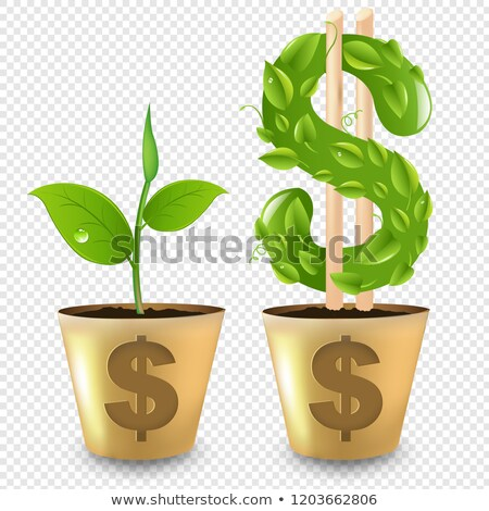 Gold Pot With Dollar And Sprout Transparent Background Stock photo © barbaliss