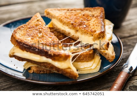 Geschnitten Käse Toast Platte Essen Brot Stock foto © Alex9500