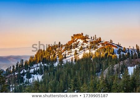hó · park · természet · szépség · kő · sziluett - stock fotó © meinzahn