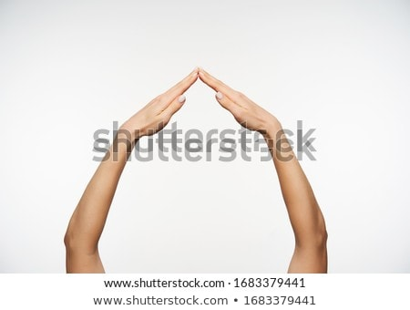 Raise The Roof Stock photo © cteconsulting