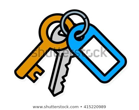 Voordeur messing sleutel Blauw plastic tag Stockfoto © adrian_n