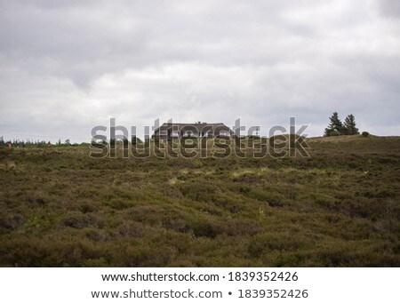Farm ház festői tájkép kilátás ranch Stock fotó © iriana88w
