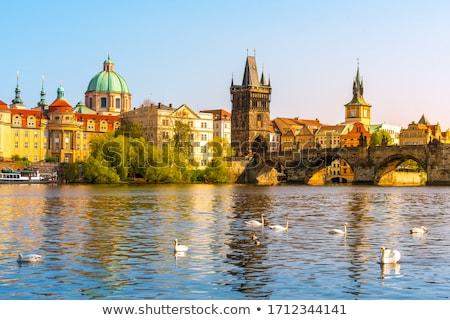 Ver cidade velha água torre Praga rio Foto stock © borisb17