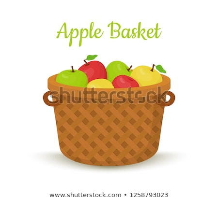 Ripe Apples in Bucket Wooden Container Harvesting Stock photo © robuart