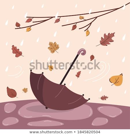 Raining Weather in Autumn Park Postcard Vector Stock photo © robuart