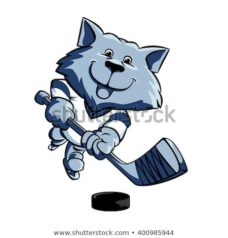 Wilk hokej gracz zwierząt sportowe maskotka Zdjęcia stock © Krisdog