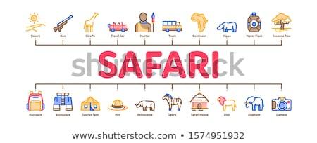 Safari podróży minimalny banner wektora Zdjęcia stock © pikepicture