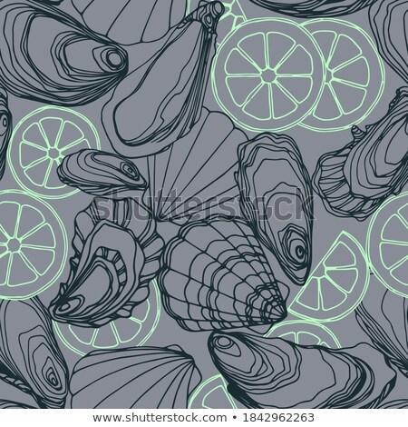 Vlees shell zeevruchten kleur vector mariene Stockfoto © pikepicture