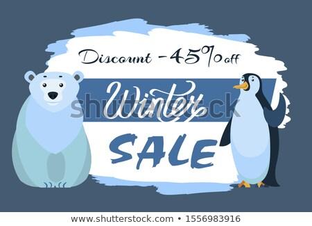 Polar White Bear and Emperor Penguin, Winter Sale Stock photo © robuart