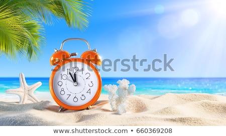 последний минута будильник пляж песок тропический пляж Сток-фото © AndreyPopov