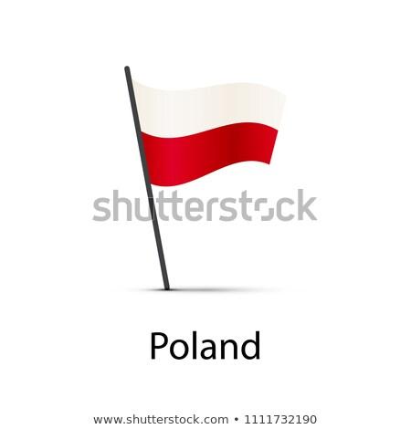 Польша флаг полюс элемент белый Сток-фото © evgeny89
