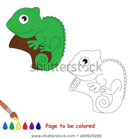 イグアナ 塗り絵の本 子供 ゲーム カメレオン ストックフォト © natali_brill